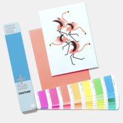 Pantone Pastels & Neon Colour Guide (Coated/Uncoated) is Now Available